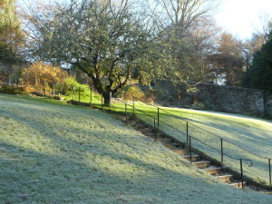 The sun beginning to thaw the frost on the bank leading to the terrace garden.